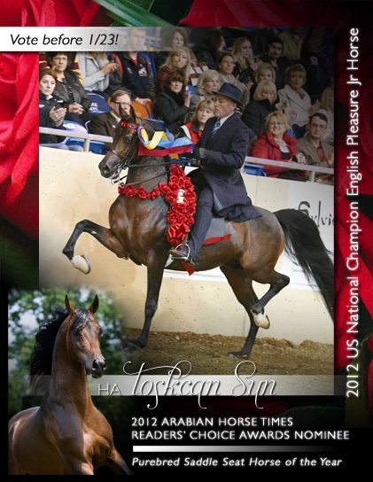 Arabian Horse Times Readers' Choice Awards