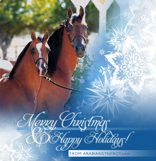 Merry Christmas & Happy Holidays from Arabian Synergy!